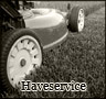 Haveservice